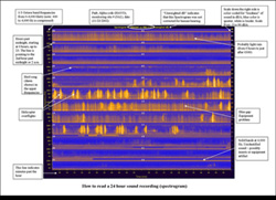 annotated spectrogram